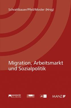 Migation, Arbeitsmarkt und Sozialpolitik von Mosler,  Rudolf, Pfeil,  Walter J., Schrattbauer,  Birgit