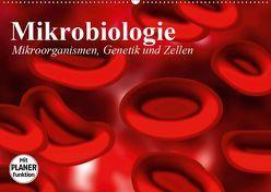 Mikrobiologie. Mikroorganismen, Genetik und Zellen (Wandkalender 2019 DIN A2 quer) von Stanzer,  Elisabeth