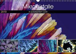 Mikrokristalle in polarisiertem Licht (Wandkalender 2019 DIN A3 quer) von Becker,  Thomas