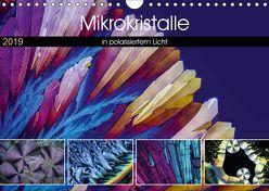 Mikrokristalle in polarisiertem Licht (Wandkalender 2019 DIN A4 quer) von Becker,  Thomas