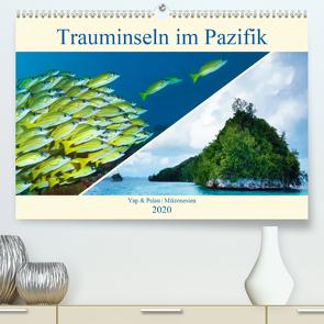 Mikronesien: Yap und Palau (Premium, hochwertiger DIN A2 Wandkalender 2020, Kunstdruck in Hochglanz) von Niemann,  Ute