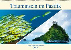 Mikronesien: Yap und Palau (Wandkalender 2019 DIN A2 quer) von Niemann,  Ute
