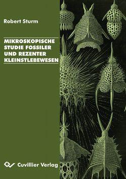Mikroskopische Studie fossiler und rezenter Kleinstlebewesen von Sturm,  Robert