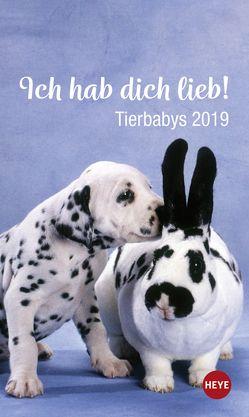 Mini Tierbabys Ich hab dich lieb! – Kalender 2019 von Heye