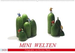 MINI WELTEN (Wandkalender 2020 DIN A2 quer) von Thiele,  Karsten