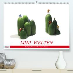 MINI WELTEN (Premium, hochwertiger DIN A2 Wandkalender 2020, Kunstdruck in Hochglanz) von Thiele,  Karsten