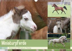 Miniaturpferde – American Miniature Horse (Wandkalender 2019 DIN A3 quer)