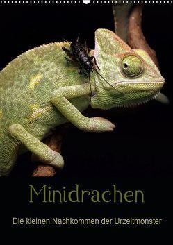 Minidrachen – Die kleinen Nachkommen der Urzeitmonster (Wandkalender 2019 DIN A2 hoch) von Enkemeier,  Sigrid