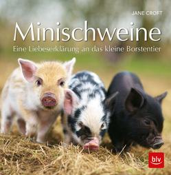 Minischweine von Croft,  Jane