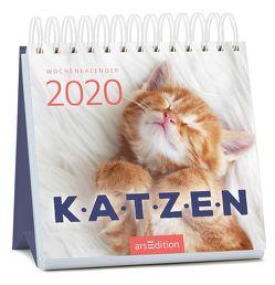 Miniwochenkalender Katzenglück 2020 – kleiner Aufstellkalender mit Wochenkalendarium