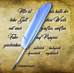 Mir ist als hätte der liebe Gott diese Worte mit einer großen, weißen Feder auf Papyrus geschrieben von Bauer,  Brigitte