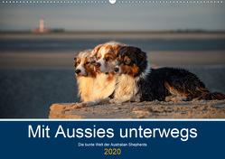 Mit Aussies unterwegs – Die bunte Welt der Australian Shepherds (Wandkalender 2020 DIN A2 quer) von Mirsberger tierpfoto,  Annett