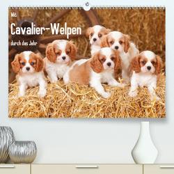 Mit Cavalier-Welpen durch das Jahr (Premium, hochwertiger DIN A2 Wandkalender 2020, Kunstdruck in Hochglanz) von Wegner,  Petra
