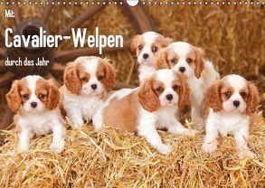 Mit Cavalier-Welpen durch das Jahr (Wandkalender 2018 DIN A3 quer) von Wegner,  Petra