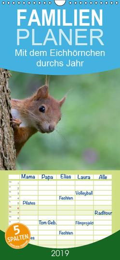 Mit dem Eichhörnchen durchs Jahr – Familienplaner hoch (Wandkalender 2019 , 21 cm x 45 cm, hoch) von Brackhan,  Margret