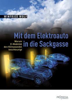 Mit dem Elektroauto in die Sackgasse von Wolf,  Winfried