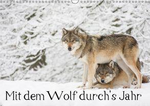 Mit dem Wolf durch's Jahr (Wandkalender 2019 DIN A3 quer) von Martin,  Wilfried