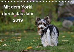 Mit dem Yorki durch das Jahr 2019 (Tischkalender 2019 DIN A5 quer) von Bauer,  Friedhelm