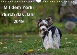 Mit dem Yorki durch das Jahr 2019 (Wandkalender 2019 DIN A4 quer) von Bauer,  Friedhelm