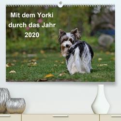 Mit dem Yorki durch das Jahr 2020 (Premium, hochwertiger DIN A2 Wandkalender 2020, Kunstdruck in Hochglanz) von Bauer,  Friedhelm