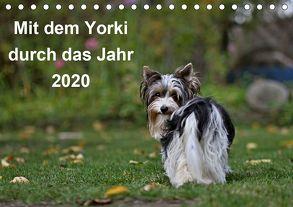 Mit dem Yorki durch das Jahr 2020 (Tischkalender 2020 DIN A5 quer) von Bauer,  Friedhelm