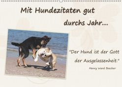 Mit Hundezitaten gut durchs Jahr / CH-Version (Wandkalender 2019 DIN A2 quer) von Chawera