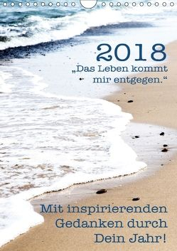 Mit inspirierenden Gedanken durch Dein Jahr. 2018 (Wandkalender 2018 DIN A4 hoch) von Holzhauser,  Monika