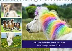 Mit Islandpferden durch das Jahr Geburtstagskalender 2019 (Wandkalender 2019 DIN A3 quer) von Beuck,  Angelika