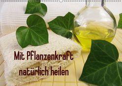 Mit Pflanzenkraft natürlich heilen (Wandkalender 2019 DIN A2 quer) von Rau,  Heike