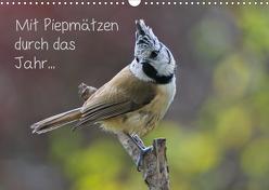 Mit Piepmätzen durch das Jahr … (Wandkalender 2020 DIN A3 quer) von Berger (Kabefa),  Karin