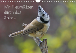 Mit Piepmätzen durch das Jahr … (Wandkalender 2020 DIN A4 quer) von Berger (Kabefa),  Karin