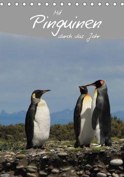 Mit Pinguinen durch das Jahr (Tischkalender 2019 DIN A5 hoch) von Göb,  Clemens, Köhler,  Ute