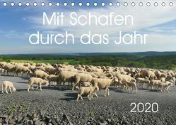 Mit Schafen durch das Jahr (Tischkalender 2020 DIN A5 quer) von CoKeDi-Photographie, Kelle-Dingel,  Cordula