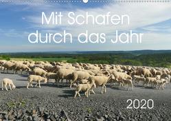 Mit Schafen durch das Jahr (Wandkalender 2020 DIN A2 quer) von CoKeDi-Photographie, Kelle-Dingel,  Cordula