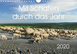 Mit Schafen durch das Jahr (Wandkalender 2020 DIN A4 quer) von CoKeDi-Photographie, Kelle-Dingel,  Cordula