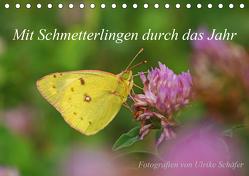 Mit Schmetterlingen durch das Jahr (Tischkalender 2020 DIN A5 quer) von Schäfer,  Ulrike