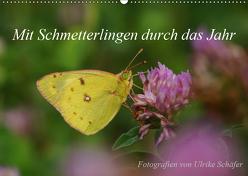 Mit Schmetterlingen durch das Jahr (Wandkalender 2019 DIN A2 quer) von Schäfer,  Ulrike