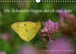 Mit Schmetterlingen durch das Jahr (Wandkalender 2019 DIN A4 quer) von Schäfer,  Ulrike