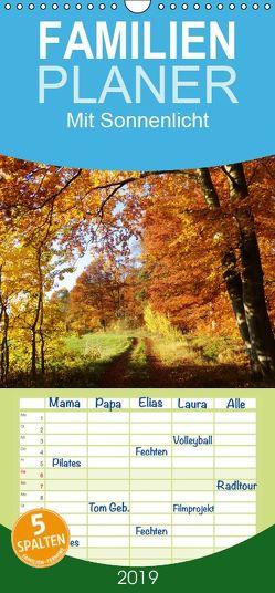 Mit Sonnenlicht – Familienplaner hoch (Wandkalender 2019 , 21 cm x 45 cm, hoch) von Schmidt,  Sergej
