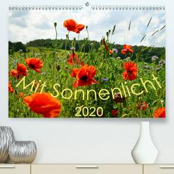 Mit Sonnenlicht (Premium, hochwertiger DIN A2 Wandkalender 2020, Kunstdruck in Hochglanz) von Schmidt,  Sergej