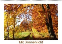 Mit Sonnenlicht (Wandkalender 2018 DIN A2 quer) von Schmidt,  Sergej
