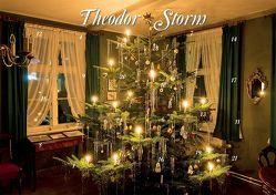 Mit Theodor Storm durch den Advent von Storm,  Theodor