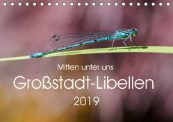 Mitten unter uns – Großstadt-Libellen (Tischkalender 2019 DIN A5 quer) von Wibke Hildebrandt,  Anne