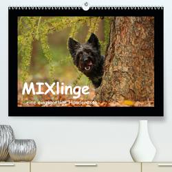 MIXlinge (Premium, hochwertiger DIN A2 Wandkalender 2020, Kunstdruck in Hochglanz) von Köntopp,  Kathrin