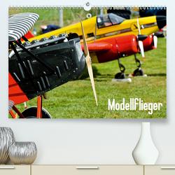 Modellflieger / CH-Version (Premium, hochwertiger DIN A2 Wandkalender 2021, Kunstdruck in Hochglanz) von Selig,  Bernd