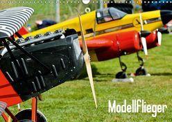 Modellflieger / CH-Version (Wandkalender 2019 DIN A3 quer) von Selig,  Bernd