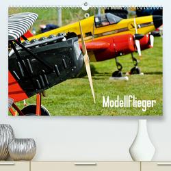 Modellflieger (Premium, hochwertiger DIN A2 Wandkalender 2021, Kunstdruck in Hochglanz) von Selig,  Bernd