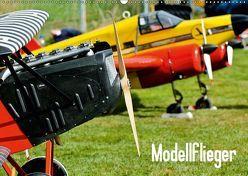 Modellflieger (Wandkalender 2019 DIN A2 quer) von Selig,  Bernd
