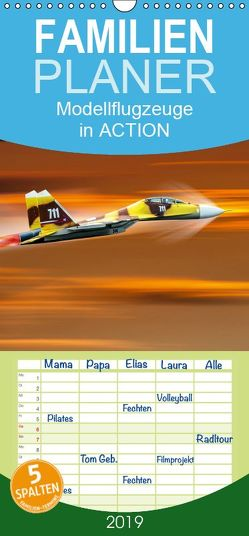 Modellflugzeuge in ACTION – Familienplaner hoch (Wandkalender 2019 , 21 cm x 45 cm, hoch) von Gödecke,  Dieter