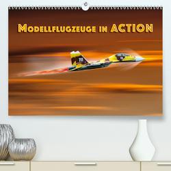 Modellflugzeuge in ACTION (Premium, hochwertiger DIN A2 Wandkalender 2020, Kunstdruck in Hochglanz) von Gödecke,  Dieter